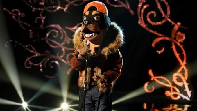 "THE MASKED SINGER: The Rottweiler in the all-new ""A Pain in the Mask"" episode of THE MASKED SINGER airing Tuesday, Dec. 10 (8:00-9:01 PM ET/PT) on FOX © 2019 FOX MEDIA LLC. CR: Michael Becker / FOX."
